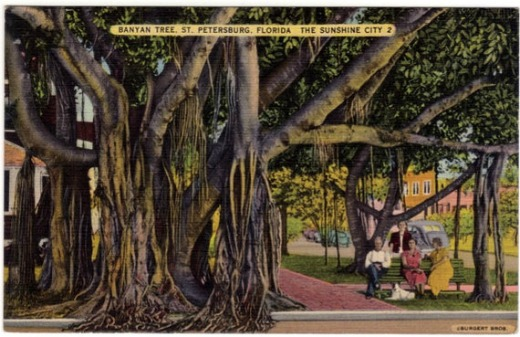 Essay on autobiography of a banyan tree